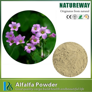 Alfalfa Powder.jpg
